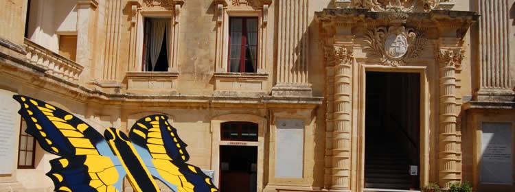 Cosa Vedere a Malta - Museo di Storia Naturale a Mdina